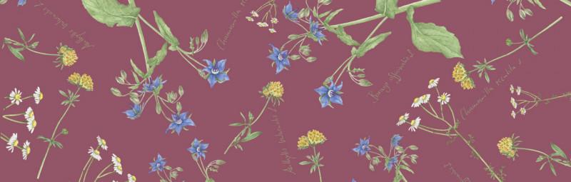 Dr.Hauschka Muttertagsgeschenke – Kosmetik in schöner Blumenverpackung