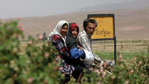 Dr. Hauschka Ätherisches Rosenöl aus dem Iran